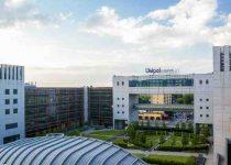Bilancio del Gruppo Unipol: circa 169 milioni in rosso